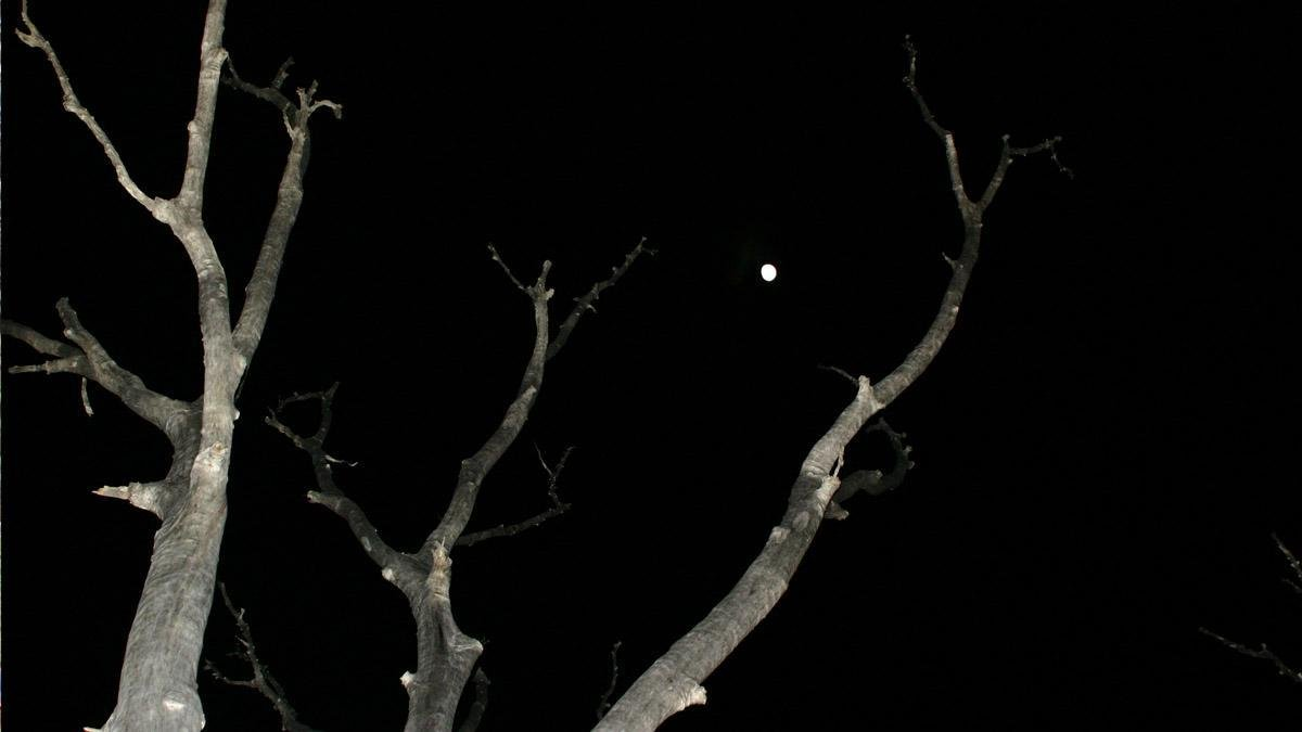Effet d'optique, lune minuscule à la Forêt Noyée