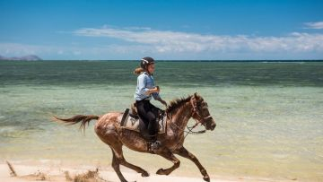 Balade à cheval Ilôt Puen + Camping