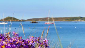 Croisière aux îles Scilly Spéciale Ötillö