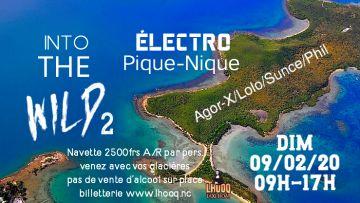 Into the Wild 2 / Pique-nique Electro