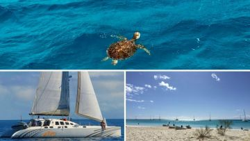 Sailing Yacht day trip 8H30 - 15H30