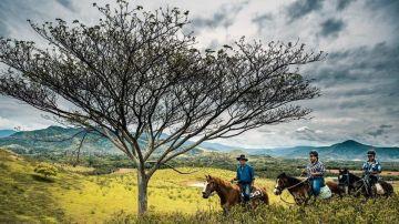 Balade à cheval - La Foa - Demi-journée