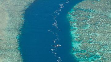 Air Paradise - Seaplane Flight - Flight To Poe Sharks Breach