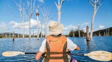 Contemplation à la Forêt Noyée - itinéraires kayak Sud Loisirs