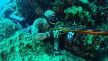 Formation Chasse Sous-Marine